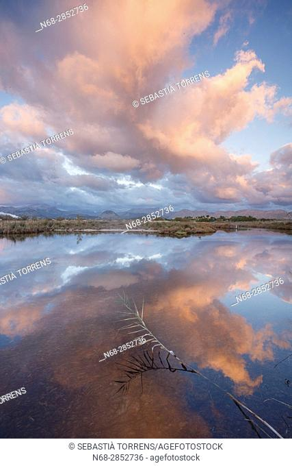 S'Albufereta and clouds reflected on water, Alcudia, Majorca, Balearic Islands, Spain