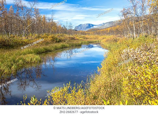Creek in Sarek national park, mountains in the background, leaves on the trees are yellow, autumn season, Swedish Lapland, Sweden