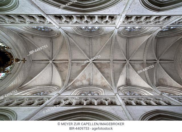 Vaulted nave from the 13th century, Lucon Cathedral, La Cathedrale Notre-Dame de l'Assomption, Luçon, Vendée, France
