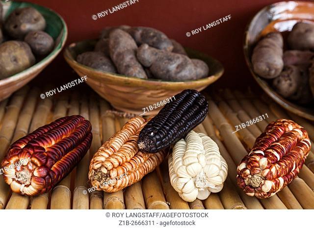 Varieties of corn and potatoes grown in the village of Chinchero near Cusco, Peru