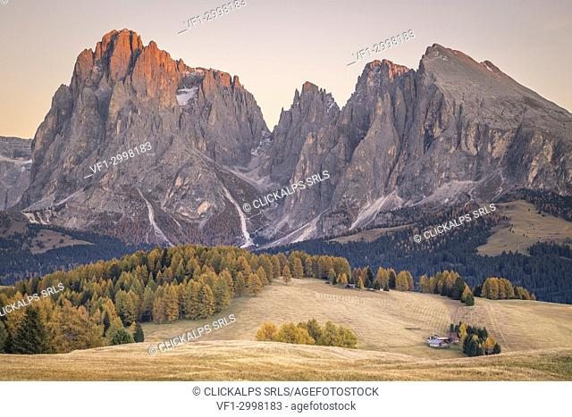Alpe di Siusi with Mount Sassolungo and Mount Sassopiatto on yhe background, South tyrol, Italy