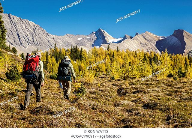 Two back packers hike near Baker Lake in the Skoki wilderness area of Banff National Park, Alberta Canada. Model Released