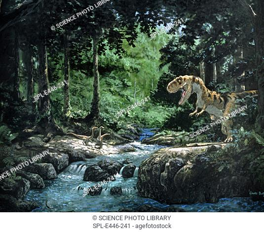 Tyrannosaurus Rex. Artwork of a Tyrannosaurus rex dinosaur hunting in a forest. Tyrannosaurus (tyrant reptile') was a large carnivore