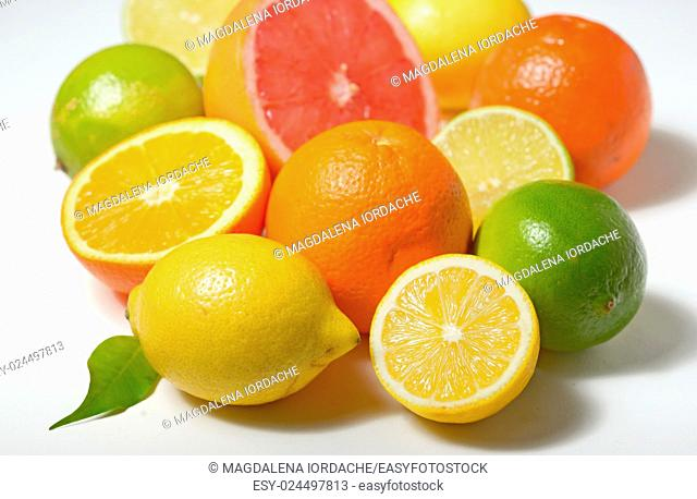 Different citrus fruits isolated on white background