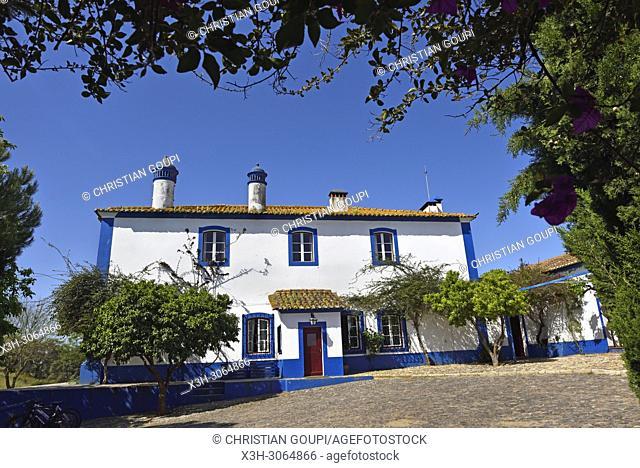 Vale do Manantio Estate, Moura, Alentejo region, Portugal, southwertern Europe