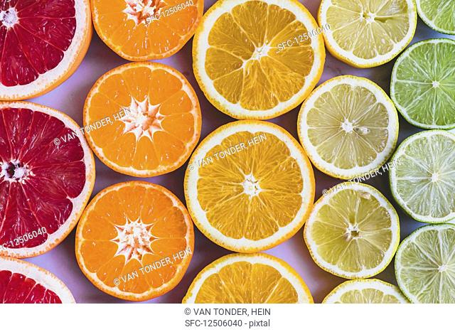 Slices of various citrus fruits (edge to edge)