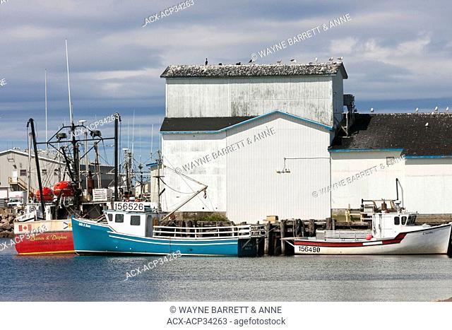 Fishing boats docked at fish processing plant, Cheticamp waterfront, Cape Breton, Nova Scotia, Canada