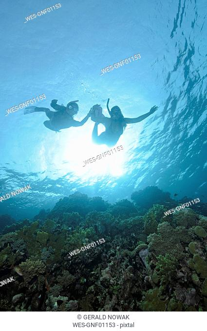 Egypt, Red Sea, Two persons snorkeling