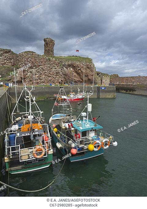 Crab Boats in Dunbar Harbour and historic castle Dunbar Scotland
