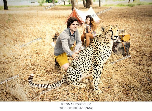South Africa, man petting tame cheetah on meadow with woman in background