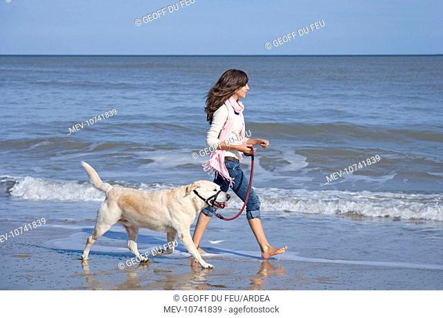 Teenage Girl walking Labrador Dog on beach