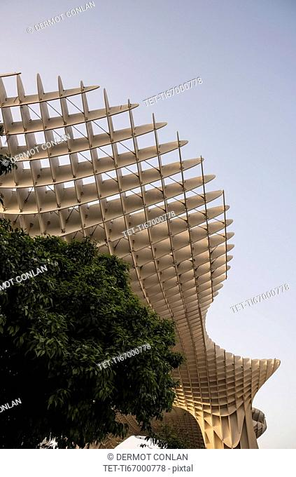 Spain, Seville, Part of Metropol Parasol and trees