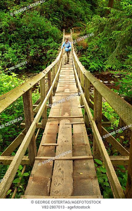 Oregon Coast Trail bridge, Oswald West State Park, Oregon