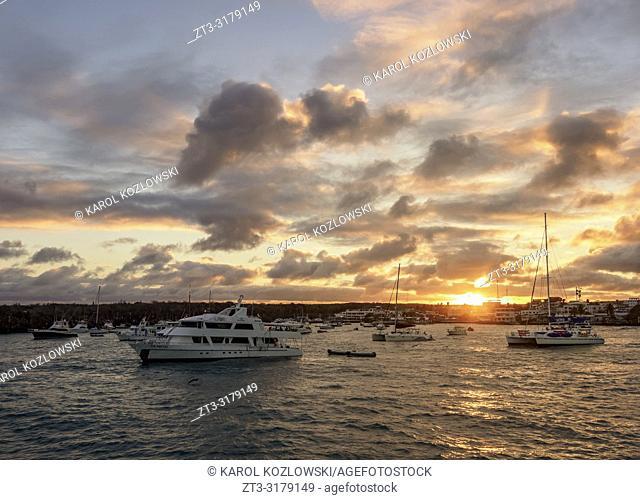 Sunset over Puerto Ayora, Santa Cruz or Indefatigable Island, Galapagos, Ecuador