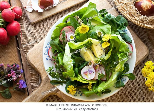 Salad wigh eggs, lettuce, radishes and wild edible plants (coltsfoot, daisy, chickweed, dandelion, lungwort)