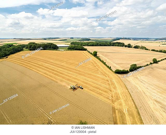 Harvest aerial landscape of combine harvester cutting summer wheat field crop with tractor trailer on farm