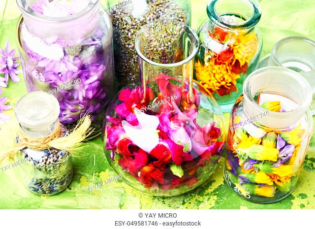 Various raw medical herbs and flowers.Alternative medicine concept.Assorted natural medical herbs