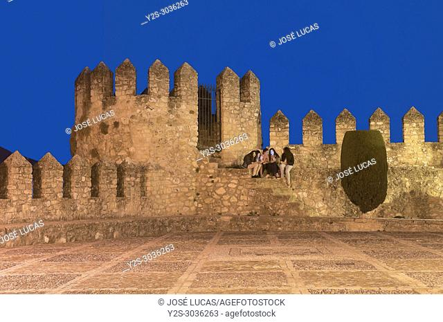 Castle Palace of the Counts of Cabra (9th century). Cabra. Cordoba province. Region of Andalusia. Spain. Europe