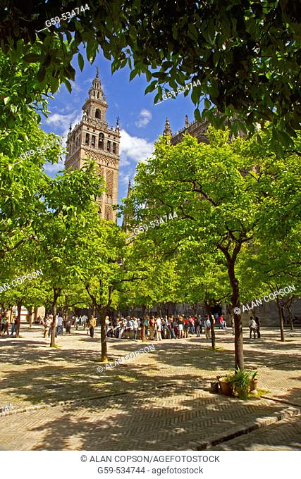Spain, Andalusia, Seville, inside the Cathedral, Patio de los Naranjos and Giralda Tower