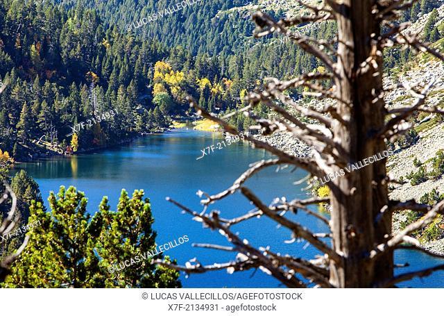 `Estany Llong',Llong lake,Aigüestortes i Estany de Sant Maurici National Park,Pyrenees, Lleida province, Catalonia, Spain