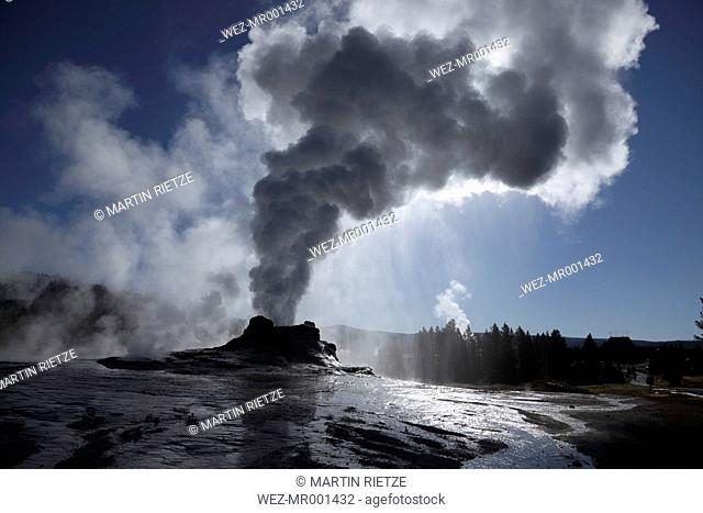 View of Castel Geyser at Yellowstone National Park