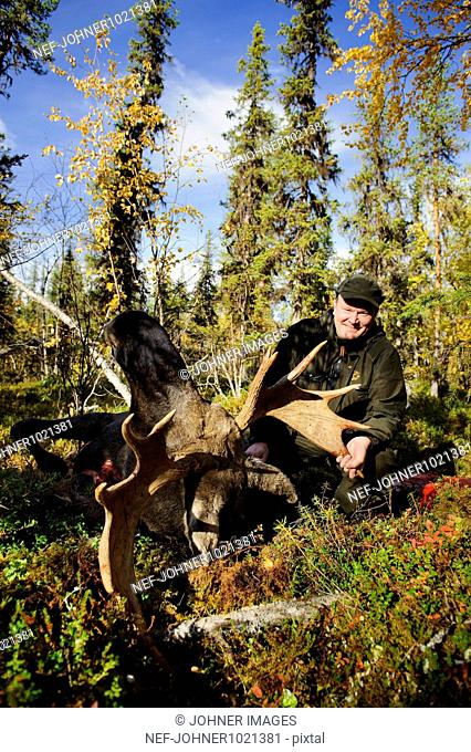 Man sitting beside dead moose in forest