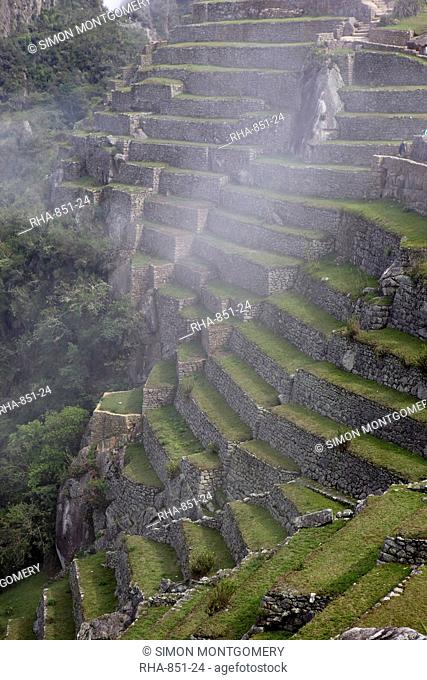 Agricultural terraces in the Inca city, Machu Picchu, UNESCO World Heritage Site, Peru, South America