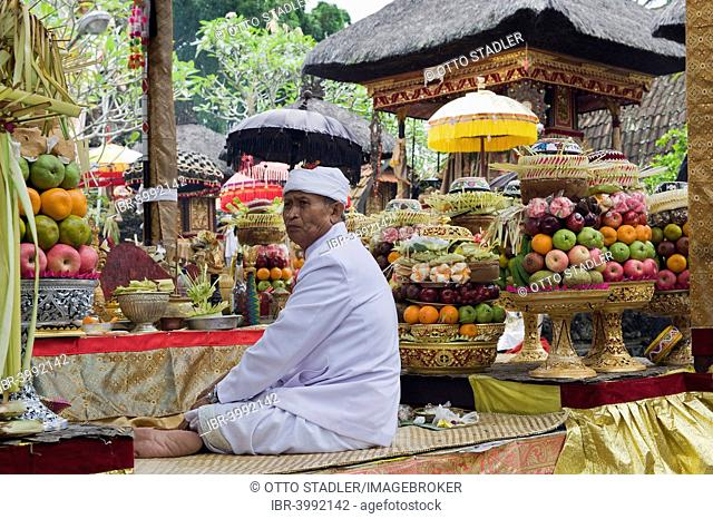 A Hindu priest amidst sacrificial offerings at a temple ceremony, Pura Desa Temple, Ubud, Bali, Indonesia