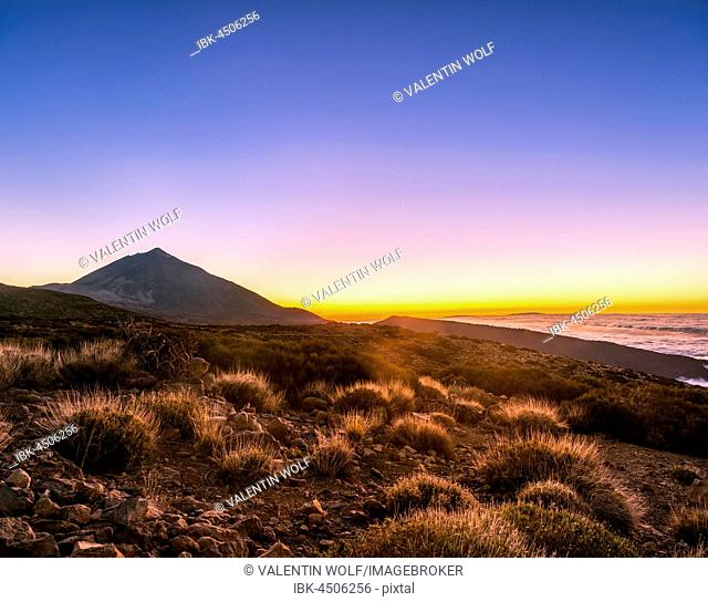 Sunset, sunset glow with evening star, cloudy sky, Volcano Teide and volcano landscape, backlit scenery, national park El Teide, Tenerife, Canary Islands, Spain