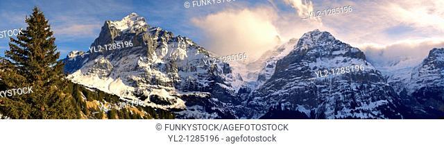 Alpine slopes looking towards the Wetterhorn left  Swiss Alps, Switzerland