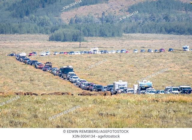 Line of cars await entry into Grand Tetons National Park, Teton County, Wyoming. USA