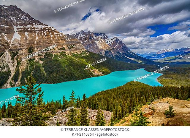 Peyto Lake along the Icefields Parkway in Banff National Park, Alberta, Canada