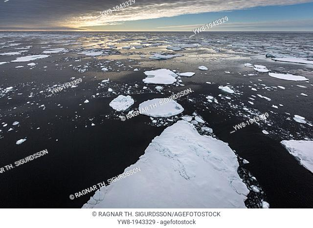 Pancake Ice-North Atlantic Ocean