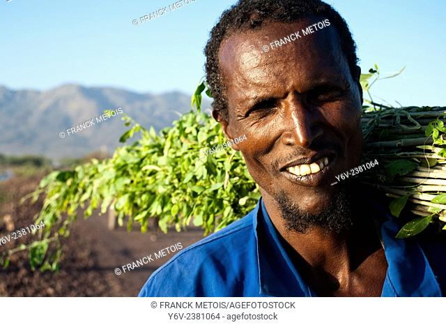 A man is carrying branches of shrubs used by the local people to clean teeth. In the background, the Fantale crater is visible