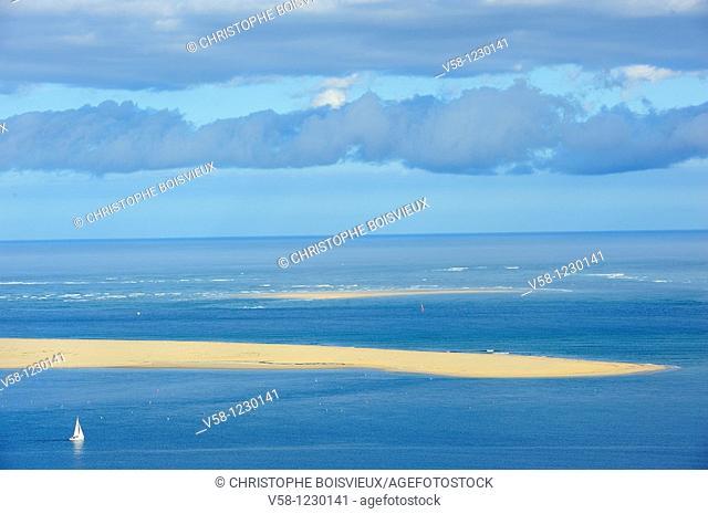 France, Gironde, Bassin d'Arcachon, Banc d'Arguin