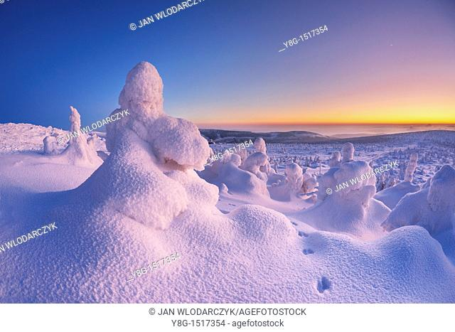 Szrenica peak, Karkonosze National Park, Poland, Europe