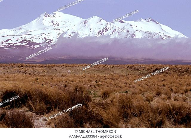 Mount Ruapehu, New Zealand Tongariro Natl Park rises 2,796 m above Rangipo Desert south of Lake Taupo