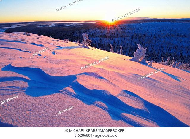 Midwinter in the Muddus National Park, UNESCO World Habitate Region Laponia, swedish lappland, North Sweden