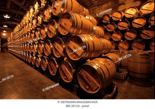 La Rioja Haro Bodega Muga wine cellar Spain