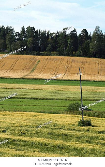 Farming fields  Simpele, Finland
