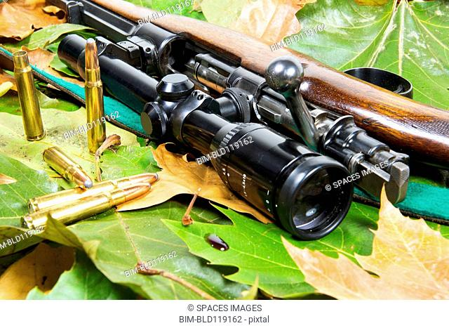 Close up of rifle with telescope and bullets on bed of leaves