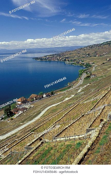 Lavaux, Switzerland, Vaud, Lake Geneva, Europe, Scenic view of a village surrounded by vineyards along the lakeshore of Lac Leman in the spring in the Canton of...