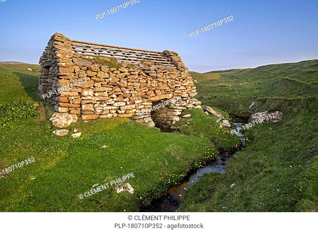 One of three ancient horizontal watermills / water mill / Huxter Clack Mills, Sandness, Mainland, Shetland Islands, Scotland, UK