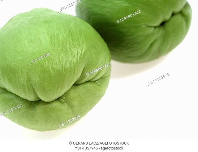 CHAYOTE sechium edule, A MEXICAN FRUIT