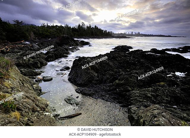 Browns Beach, Wild Pacific Trail, Ucluelet, Vancouver Island, BC, Canada