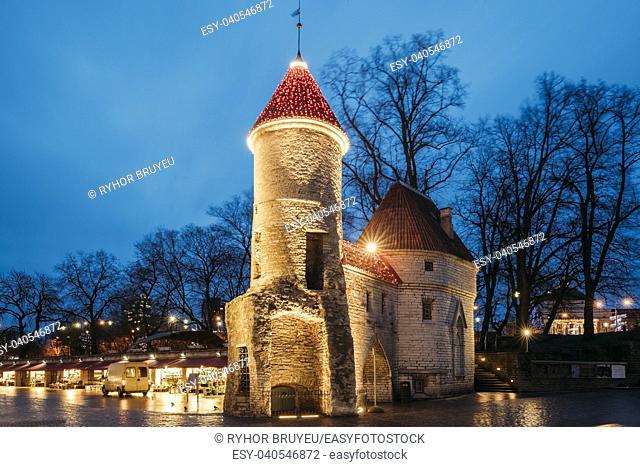 Tallinn, Estonia. Famous Landmark Viru Gate In Street Lighting At Evening Or Night Illumination. Christmas, Xmas, New Year Holiday Vacation In Old Town
