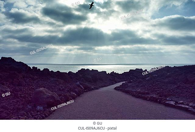 Road, sea and rocks, Lanzarote, Canary Islands, Spain