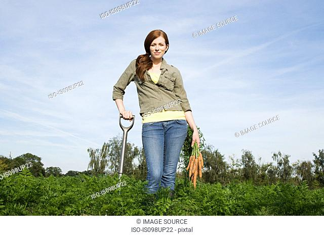 Young woman harvesting carrots in field