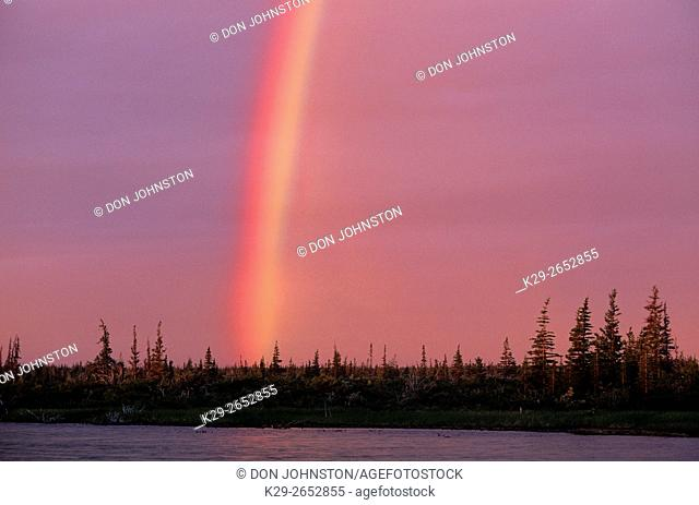 Rainbow over boreal landscape, Churchill, MB, Canada