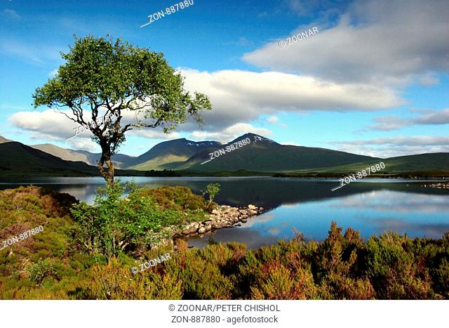 A still summers morning at Black Mount from an island on Lochan nah-Achlaise